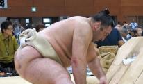 ვინ მოიგებს, ტოჩინოშინი თუ ტკივილი? საინტერესო ფოტოები იაპონიიდან [VIDEO]